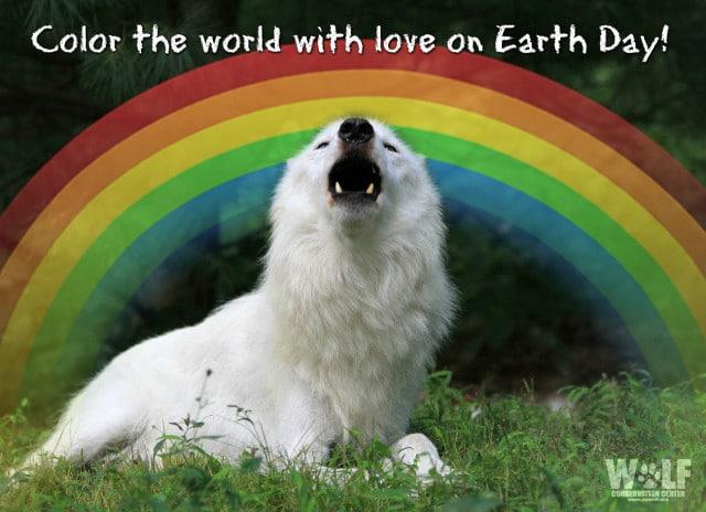 Atka_howl_rainbow_logo_2sm