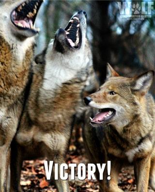 victory_logo_sm_2