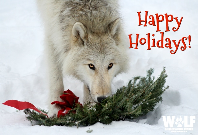 Happy_holidays_ecard_blog