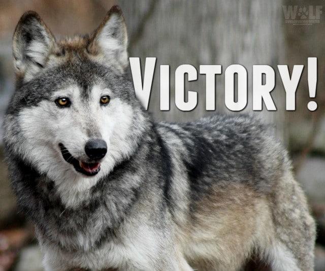 victory_lobo_logo_2_sm