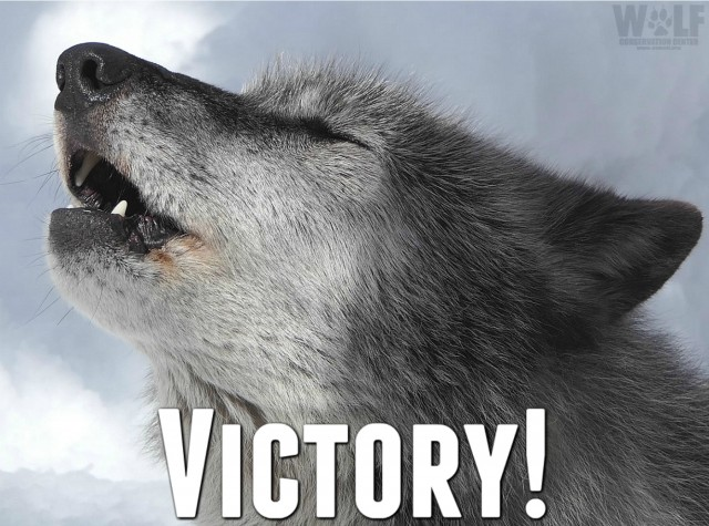 victory_howl_edit_logo_sm