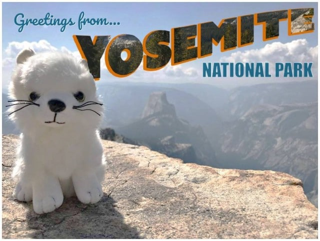 Atka_Yosemite