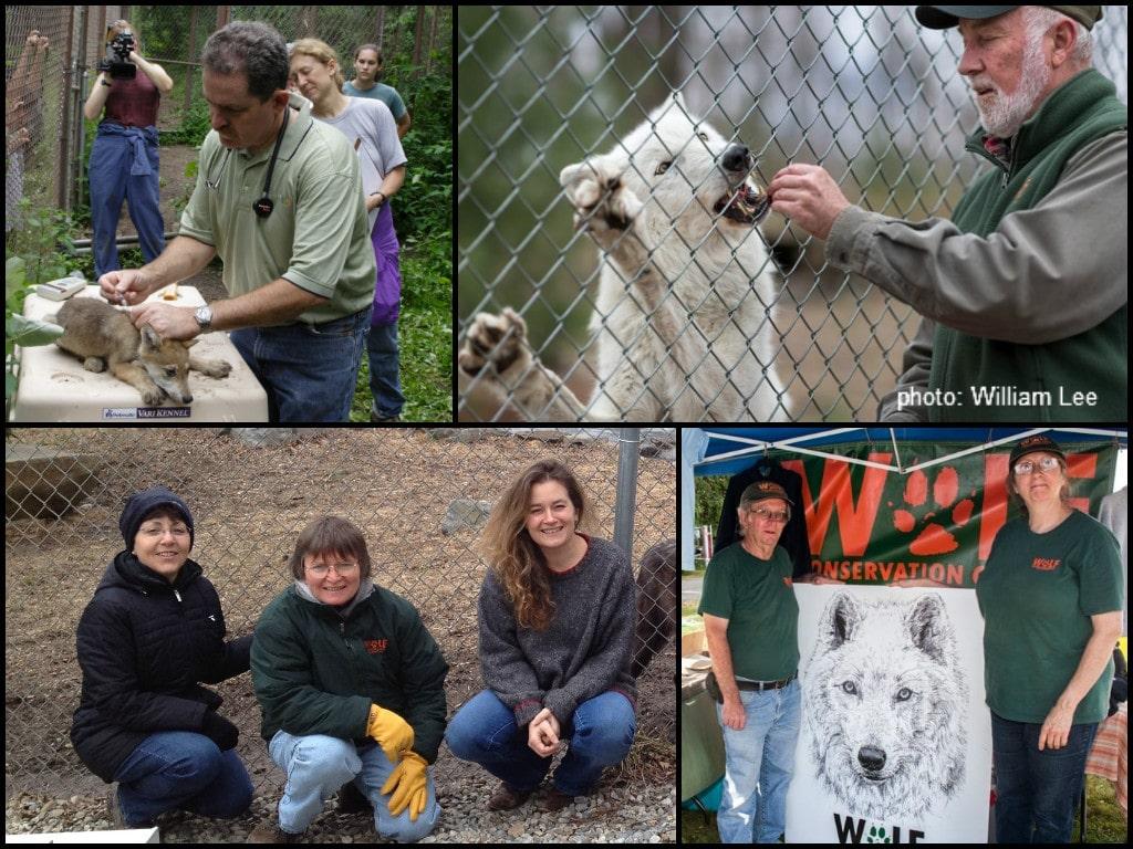 Volunteers Collage