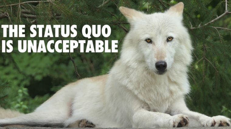Call on Governor Inslee to End WDFW's Assault on Wolves