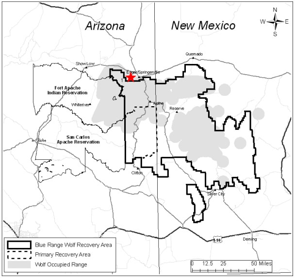 Mexican wolf occupied range in Arizona and New Mexico within the Mexican Wolf Nonessential Experimental Zone as defined in the Final Rule (USFWS 1998). Image Credit: USFWS