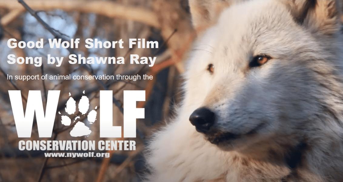 ShawnaRay Film Thumbnail