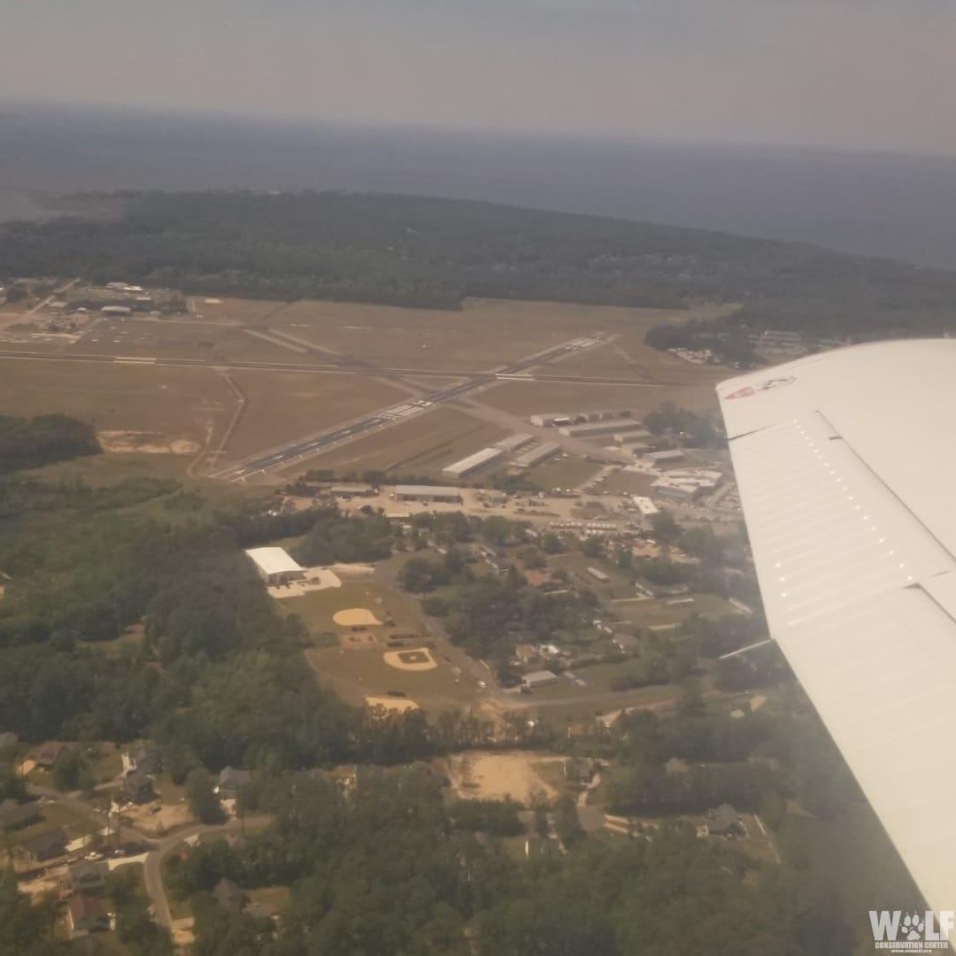 A glimpse of the wild! Deven flew into the Dare County airport.