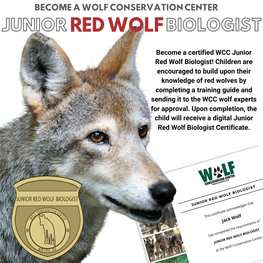 Red Wolf Jr Biologist Fb
